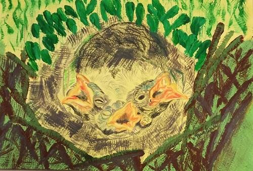 Baby Robins (2)