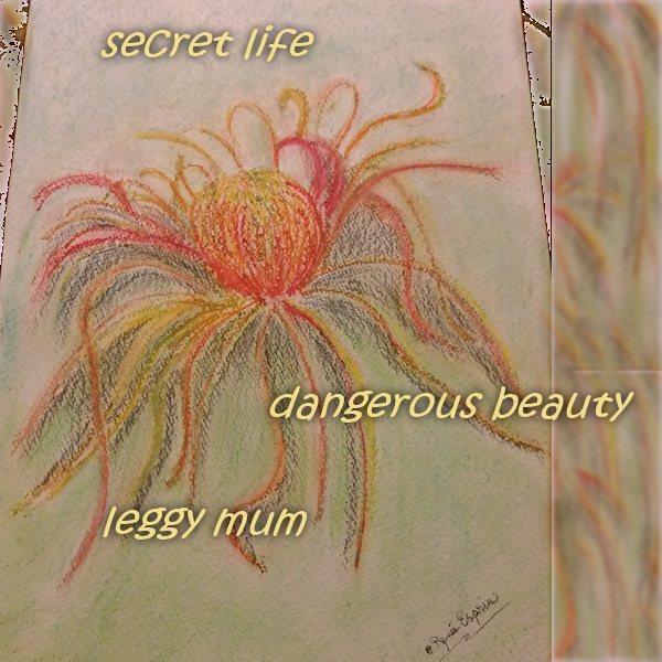 Mum Beauty