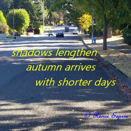 Shadows of Autumn